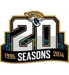 Stitched NFL Jacksonville Jaguars 1995-2014 20TH Season Jersey Patch